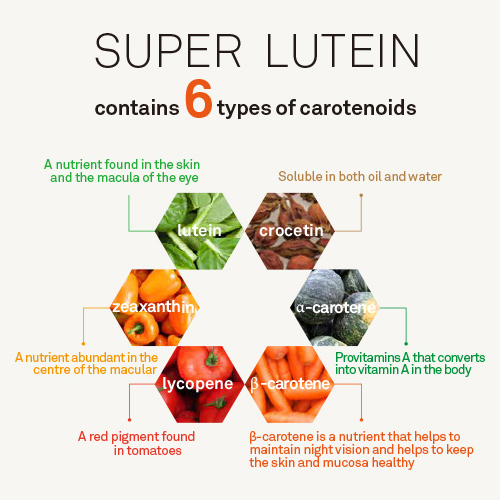 The Hally Shop - Super Lutein Essential Carotenoids